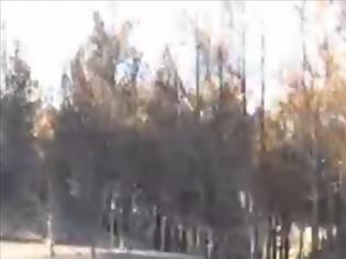 Φωτογραφία για VIDEO: Aποκαλυπτικό βίντεο από την καταστροφή της Χίου...