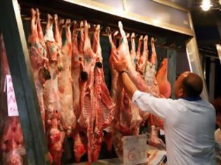 Φωτογραφία για Ξεκίνησε ήδη ο πόλεμος του αρνιoύ - Δείτε πόσο πωλούν οι κτηνοτρόφοι τα αμνοερίφια
