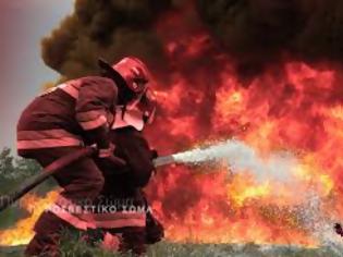 Φωτογραφία για Προκήρυξη 725 Δοκίμων Πυροσβεστών