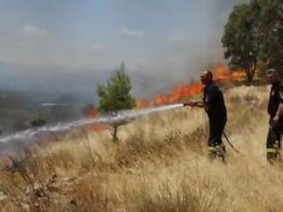 Φωτογραφία για Φωτιά από κεραυνό στη Χαλκιδική